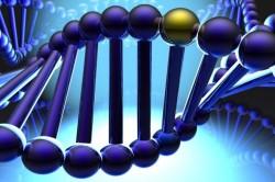 Генетическая предрасположенность - причина пассивно агрессивного расстройства