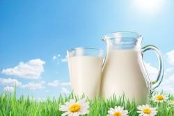 Польза молока при бессонице
