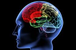 Отмирание большого количества клеток мозга - причина старческого психоза