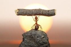 Радость от преодоления трудностей
