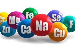Необходимость витаминов и микроэлементов для организма